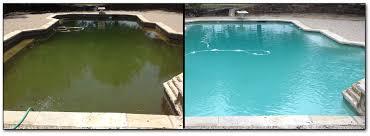 pool cleaning tips green pool cleaning tips pool algae types pool stop rockwall tx