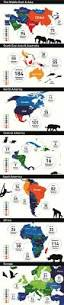 best 25 animals in the world ideas on pinterest world animals
