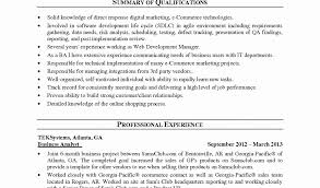Sample Resume Of Business Analyst by Business Analyst Project Manager Sample Resume New Cover Letter