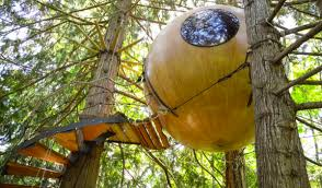 tiny hanging sphere tree houses