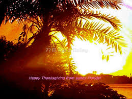 happy thanksgiving from florida by b randi bailey