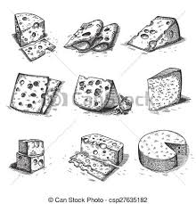 vector of hand drawn doodle sketch cheese with different types of