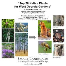 using georgia native plants july smartlandscapes designworks llc landscape hardscape