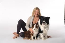 australian shepherd yoga bleu lotus yoga yoga studio in chesterton