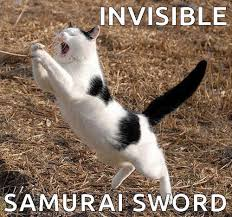 Invisible Cat Memes - invisible samurai sword cat meme on we heart it