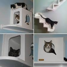 Free Diy Cat Tree Plans by Cat Tree Furniture Foter