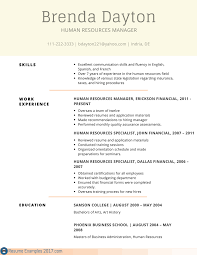 Best Resume Skills List by Finance Skills List Resume Customer Service Resume 15 Free