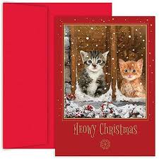 cat and dog christmas card ideas