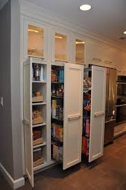 Kitchen Pantry Cabinets Built In Kitchen Pantry Cabinet Home Designs