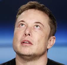 Elon Musk Elon Musk Erklärt Tesla Für Völlig Bankrott Aktie Stürzt Nach