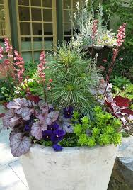 1701 best garden container gardening images on pinterest pots