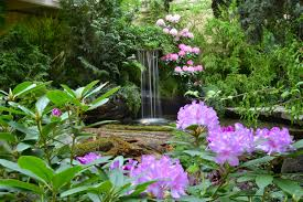 the butchart gardens flower and garden report march 12 2015