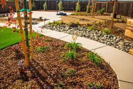 Drought Tolerant Landscaping Ideas Drought Tolerant Landscape Ideas Gallery Of A Charming Stone Path
