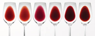 different shades of red of red just wine