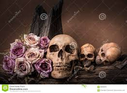 halloween background skulls still life photography with human skull and roses stock photo