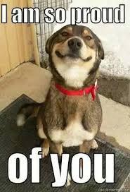 Proud Of You Meme - 8 best zresponse proud pride images on pinterest ha ha funny