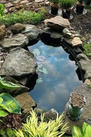 best garden pond filters best garden pond plants best garden pond