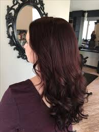 light mahogany brown hair color with what hairstyle best 25 dark mahogany hair ideas on pinterest mahogany brown