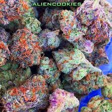 buy edible cannabis online buy high grade marijuana for sale thc and cbd