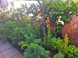 plant talk langley main street garden initiative