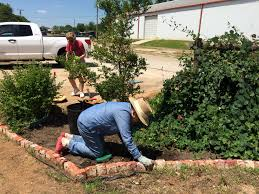 The Month Of June Flower - volunteers hard at work weeding flower beds at wildscape brown