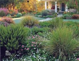 Front Yard Landscaping Without Grass - the 25 best no grass yard ideas on pinterest garden ideas no