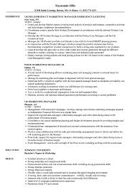 cv uk resume uk resume for study