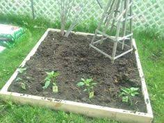 gardens to gro 3 x 6 ft raised vegetable garden bed with hinged