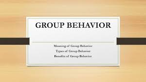 Types Meaning Group Behavior Meaning Of Group Behavior Types Of Group Behavior