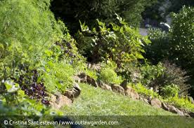 10 rules for growing vegetables in the front yard outlaw garden