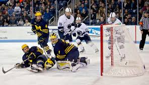 bentley college hockey hockey abby drey photography