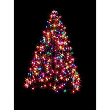outdoor lighted wire trees rainforest islands ferry