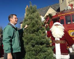 governor u0027s christmas tree installed at cedar crest