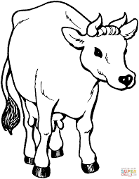 coloring pages of a cow kids coloring europe travel guides com