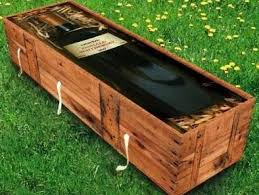 cheap coffins would you consider a cardboard coffin what you need to