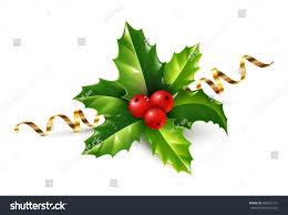 vector realistic holly christmas ornament holly stock vector