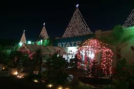 Shawns Pumpkin Patch Los Angeles Ca by Where You Can Buy Christmas Trees In Los Angeles