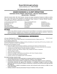 Operations Executive Resume Examples by Dawn Lacosta Resume Business And Operations Executive 061913