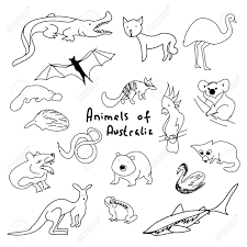 animals of australia a set of simple drawings cartoon animals