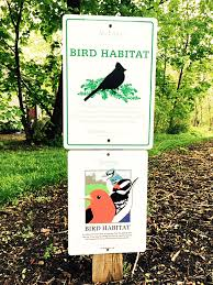 bird friendly native plants audubon bird habitat recognition program audubon pennsylvania