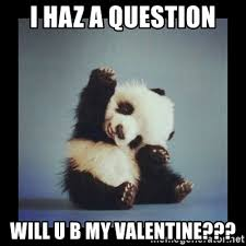 Be My Valentine Meme - i haz a question will u b my valentine cute baby panda meme