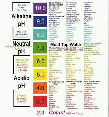 ph scale and alkalinity of foods most cancer patients u0027 bodies