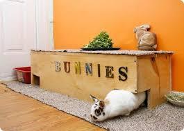 Cool Pets Rabbit Hutch 53 Best Rabbits Images On Pinterest Rabbit Hutches House Rabbit