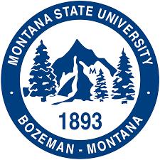 montana state university wikipedia