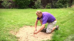 How Do You Calculate Square Footage Of A House by How To Measure Square Footage For Sod Sod U0026 Lawn Care Youtube