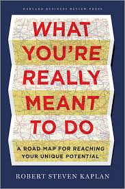 what you re really meant to do a road map for reaching your unique