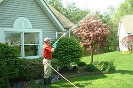 spray service on whidbey landscaping services in clinton