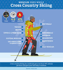fridayfix snowshoeing or cross country skiing which to try