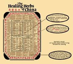 herb chart the healing herbs of china bencao tubiao an educational poster