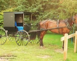 Amish Home Decor Amish Buggy Etsy
